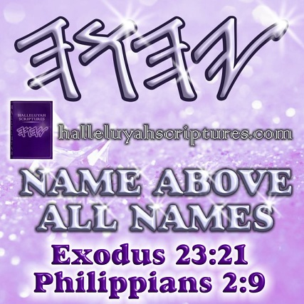 Messianic-Restored-Names-Biible-HalleluYah-Scriptures-The-Scriptures-Free-Bible-Hebrew-Bible-Hebrew-Parallel-Bible-waterproof-Bible-Israel-Yisrael-Yahweh-The Name