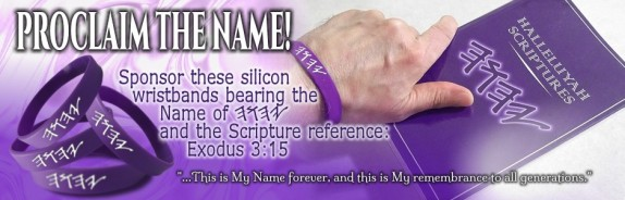 HalleluYah Scriptures Review + Parallel + Hebrew Bible + Sacared Bible + Restored Name Bible + The Best Bible & Devine Name Bible + The Scriptures & Cepher Yahweh & Yahwah